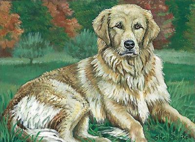 Weight In Gold Golden Retriever Pet Portrait Stories In Paint